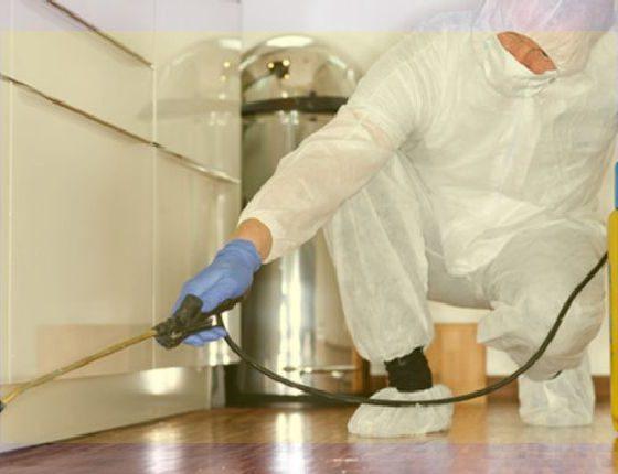 Desinfección de ambientes en oficinas, casas
