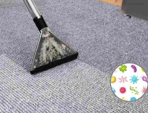 Lavado de alfombras y muebles